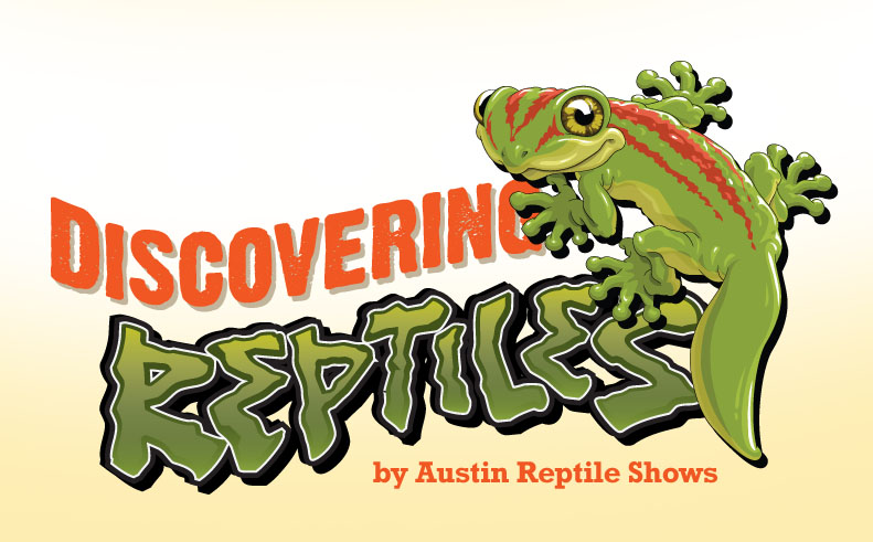 Discovering Reptiles After School Program