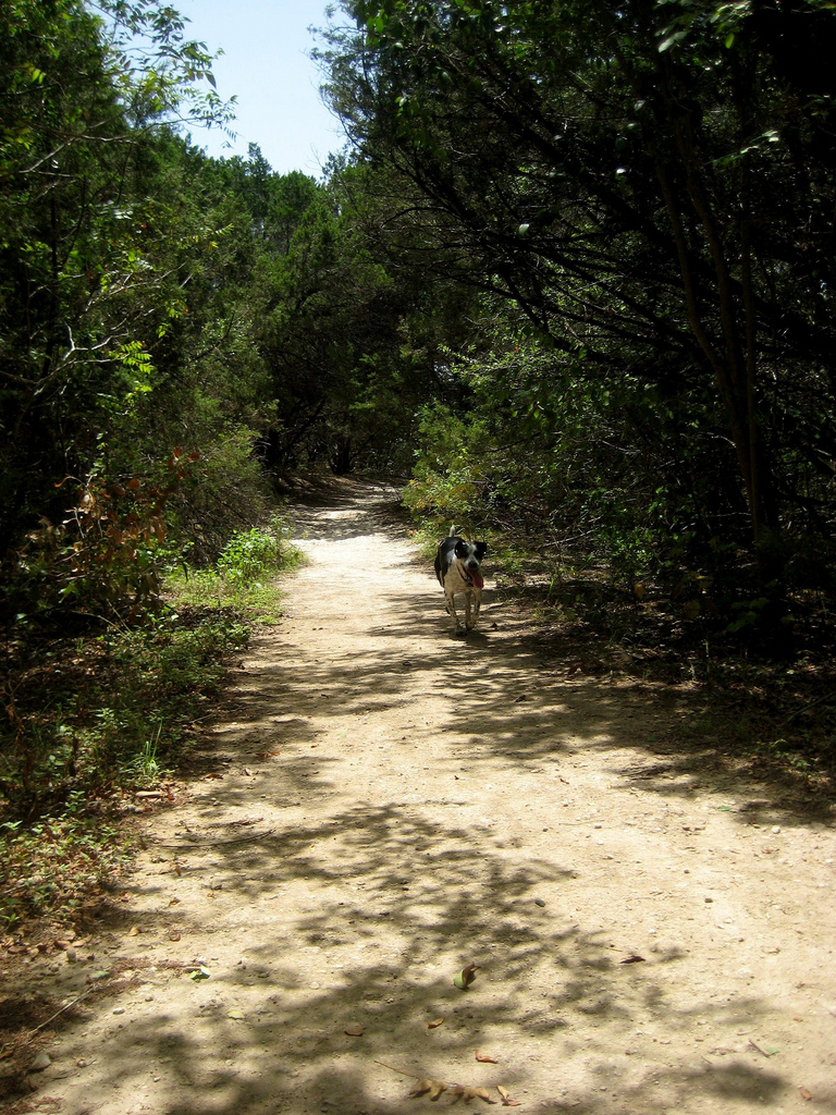 3 Reasons To Get Lost At Walnut Creek Park This Summer
