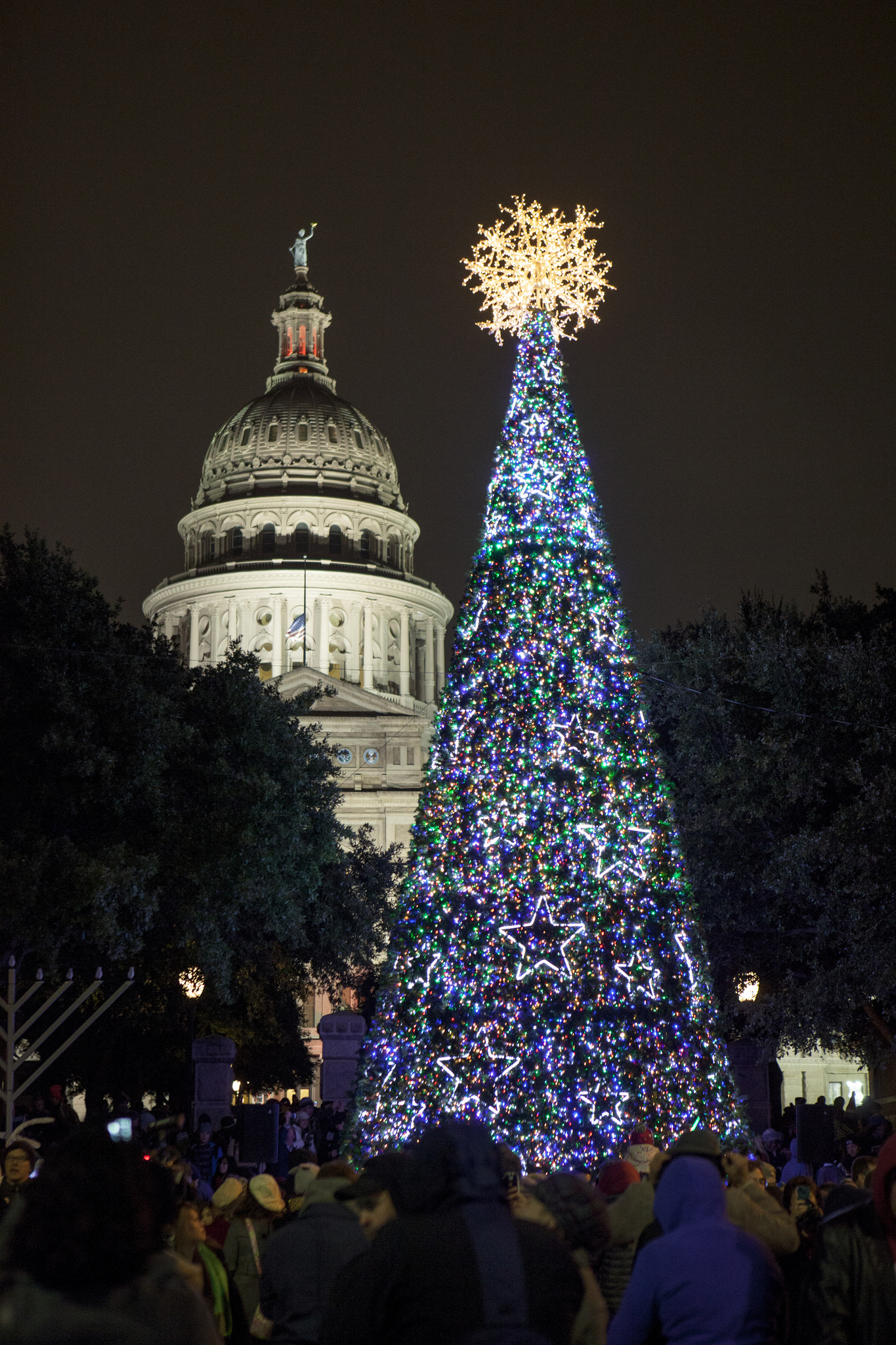 Texas Capitol Christmas Tree
