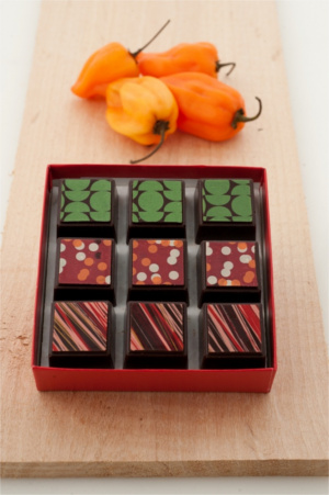 Delysia Chocolatier Latin Collection