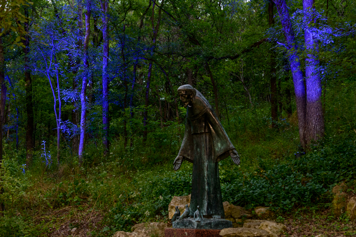 St Francis With Birds by Charles Umlauf