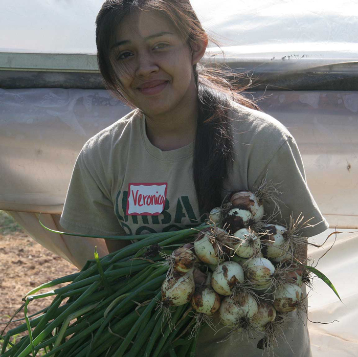 Urban Roots Intern with Fresh Onions