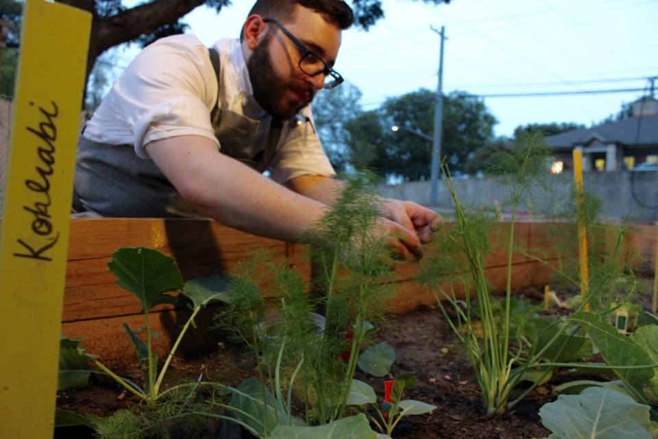 Emmer and Rye Garden in Austin
