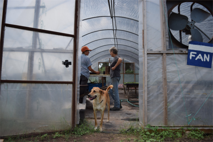 Boggy Creek Farm Greenhouse