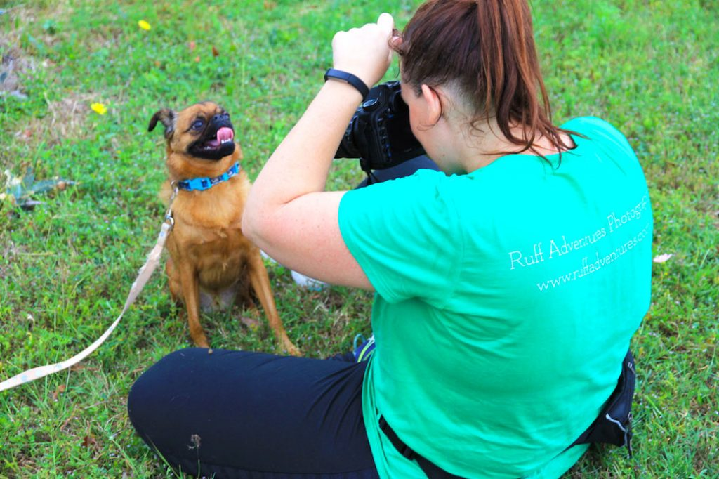 Dog Photographer in Austin