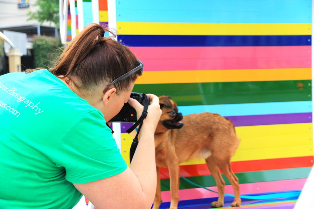 Ruff Adventures Dog Photographer in Austin