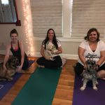 Make a Special Connection Doing Yoga With Your Dog at Austin Doga