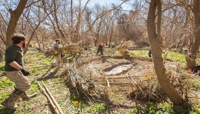 Learn How to Create Shelter at Earth Native Wilderness School