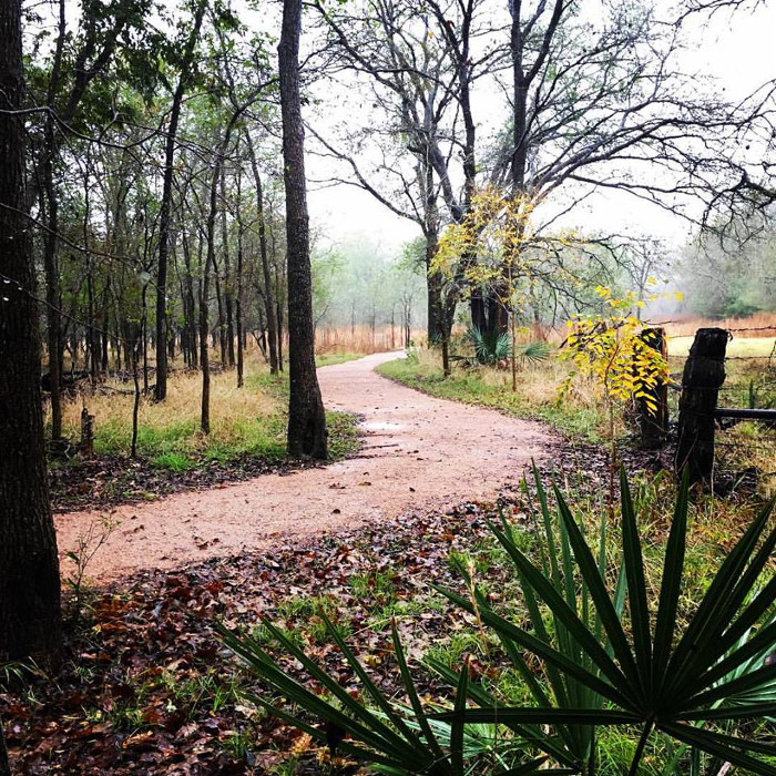 Palmetto State Park Hiking Trails