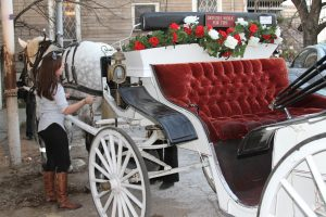 Austin-Carriage-Getting-Ready