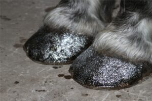Austin-Carriage-Glitter-Hooves-Horse