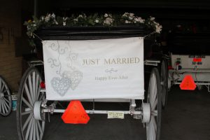 Austin-Carriage-Just-Married