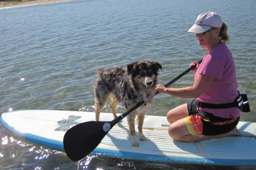 Stand up paddle boarding with dog