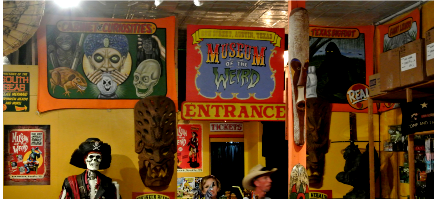 Image result for the museum of the weird