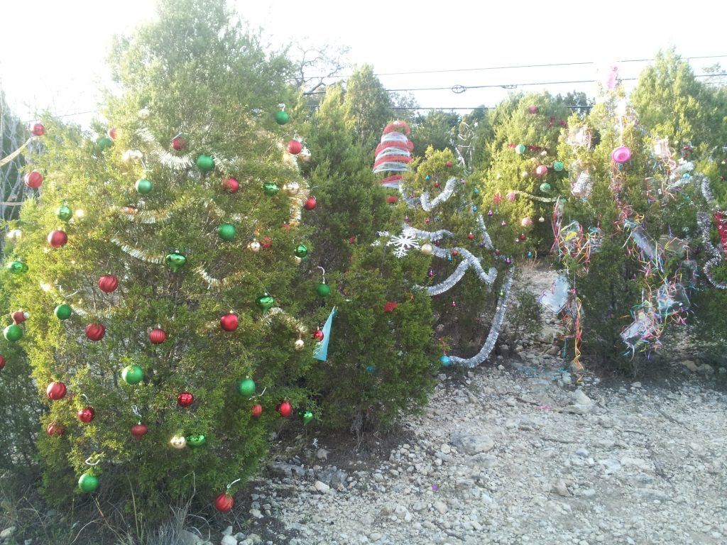 Decorated trees on 360