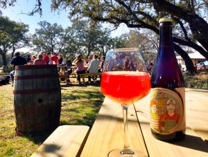 Jester King Ambree Farmhouse Amber Ale