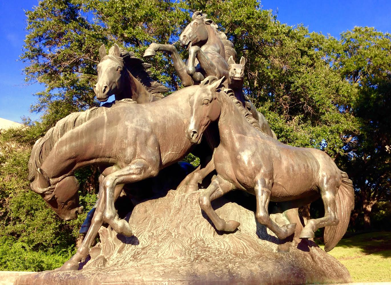 Mustangs Statue in Austin TX