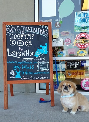 Lofty Dog Toys and Treats in Austin