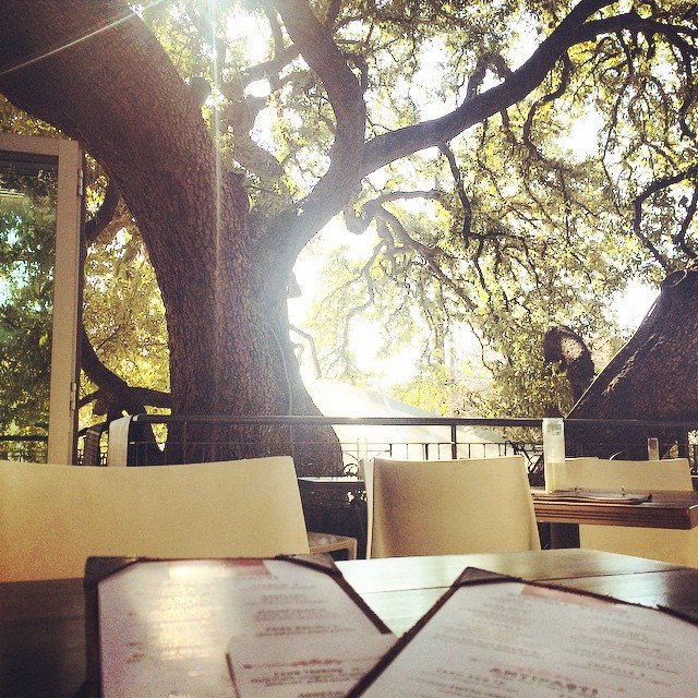 Patio at Olive and June