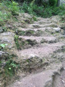 Violet Crown Trail Rock Steps