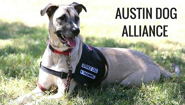 Austin Dog Alliance Changes Lives With Dog Therapy