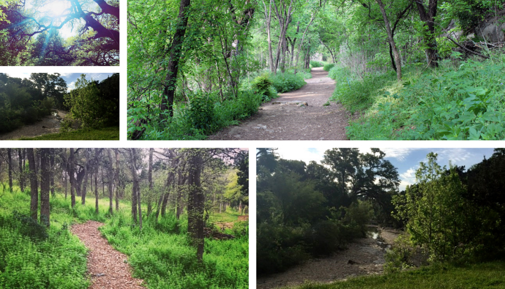 Best Austin Running Trails