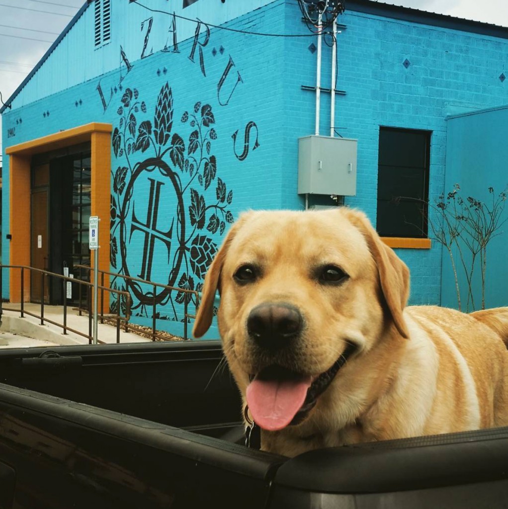 Dog Friendly Austin Brewery