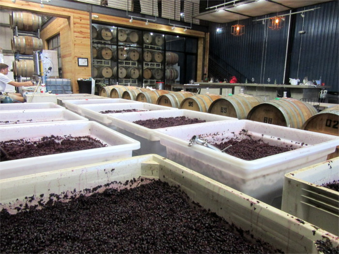 Watch Winemaking at The Austin Winery