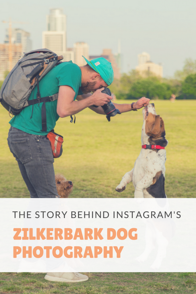 ZilkerBark Austin Dog Photography