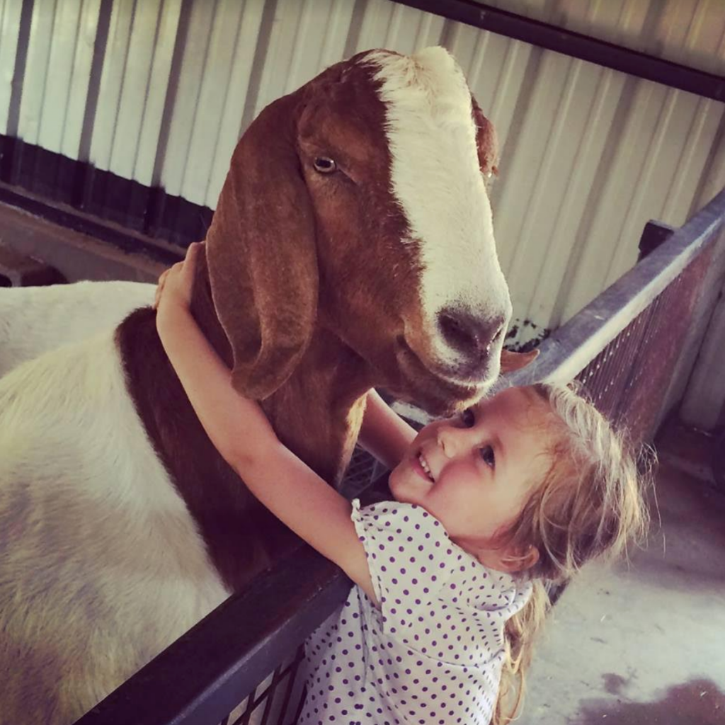Hugging Goat at Austin Zoo