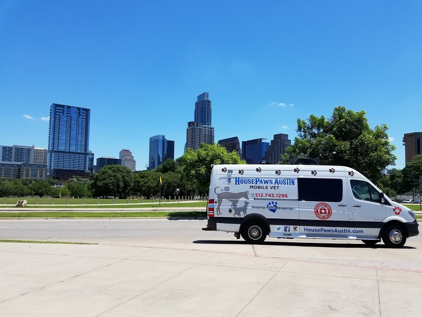 Mobile Veterinarians in Austin