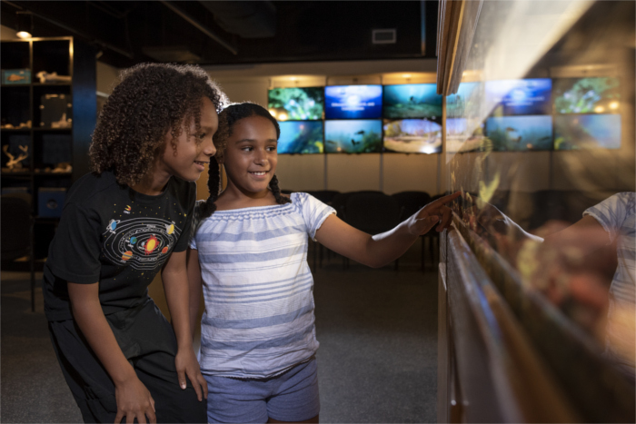 Discovery Hall Aquarium at The Meadows Center